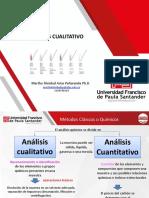 Analisis cualitativo (1)