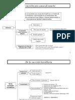 ESQUEMA-Derecho Sucesorio, Carlos Lopez..pdf