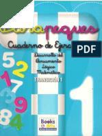 Parapeques 1 Nivel de Transicion Matematica