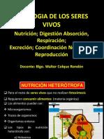 NUTRICION RESPIRACION EXCRECION