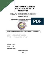 CARACTERISTICAS MICROSCOPICAS DE MADERAS CONIFERAS.docx