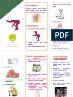 249830643 Leaflet Reumatik