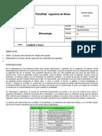 Informe 4 Mineralogia Practica