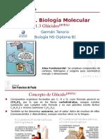 gtp_t1._biología_molecular__3ª_parte_glúcidos__2016-17.pdf