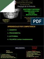 1T Anatomia Funcional 2014-III