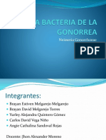 La Bacteria de La Gonorrea 701