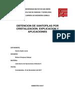 Obtencion Xantofilas Laura Garcia Ayala
