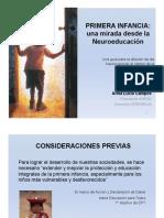PRIMERA INFANCIA .pdf
