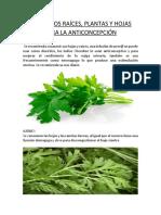 Raíces y, plantas y hojas usadas como anticonceptivo e importantes en Obstetricia