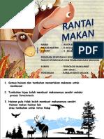 Rantai Makanan Tahun 5 -Cgu Najib