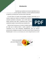 desarrollo nutricion.docx
