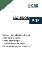liquidos informe