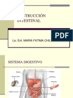 Obstruccion Intestinal[1]