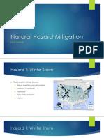 natural hazard mitigation - swaney