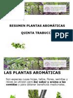 Taller AROMATICAS TRABUCCO 2.pdf
