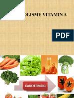 3. Metabolisme Vitamin A