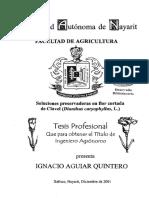 Tesis de Soluciones Conserv Pc Flores