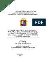 Evaluacion de Aceites Esenciales Naturales e Insecticida Quimico en El Control Del Gorgojo de Los Andes