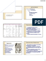 aula teorica 6 platelmintos.pdf