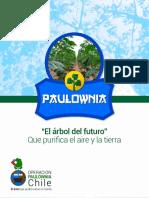 Operación Paulownia Chile
