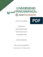 Trabajo de Metodologia Examen (1)
