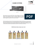 Caged_System_part2.pdf