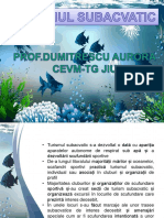 turismul_subacvatic.pdf