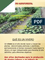 Clase 3. Vivero Agroforestal2018