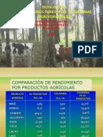 Clase Silvicultura Plantaciones1