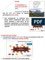 PRACTICA 06 2016 - ALUMINIO - CORRECCION DEL SUELO ACIDO.pptx