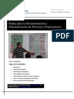 Lineamientos Para Documentaci__n y Sistematizaci__n 01-07-10