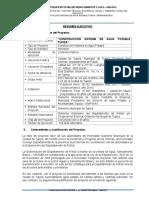 Resumen Ejecutivo_tupiza III