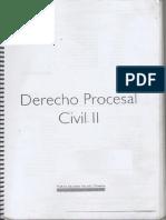 Manual Derecho Procesal Civil II