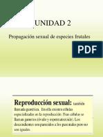 3a Clase (Propagación Sexual de Especies Frutales)