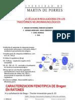 Células b Reguladoras