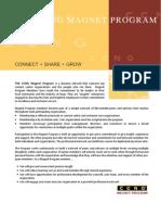 Magnet Program Overview