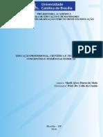 EDUCAÇÃO PROFISSIONAL, CIENTÍFICA E TECNOLÓGICA