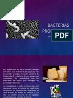 Bacterias PRopionicas