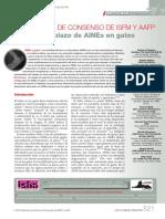 AINES isfm AAFP.pdf