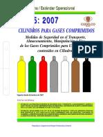 NEO-05 Seguridad Gases Comprimidos