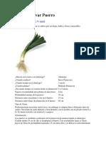 Como Cultivar Puerro.docx