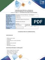 Anexo 1. Fase 4 - Formulaciones Base Recomendadas