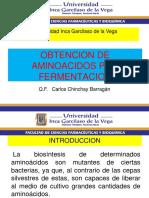 10. UIGV AMINOACIDOS