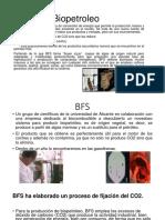 Bio Petroleo