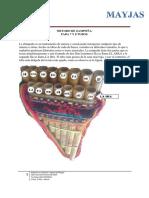 202664657-METODO-DE-ZAMPONA3.pdf