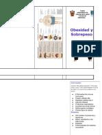 Triptico Obesidad y Sobrepeso.docx