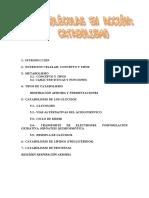T. 17catabolismo