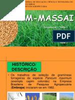 Capim Massai