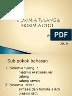 Biokimia Tulang Dan Otot