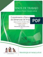 Flores Diaz, Irma Leticia -Cumplimiento y Ejecucion de Sentencias de Amparo